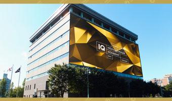 Баннер — IQ